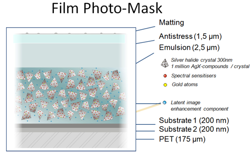 Polyester film cross-section